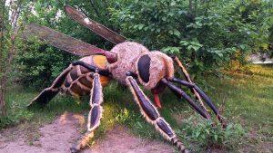 Gigantyczny pszczoła. Fot. Park Edukacyjno-Rozrywkowy Mikrokosmos