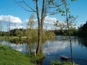 Rzeka Pilica. Fot. Archiwum Urzędu Miasta Sulejowa